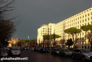 FAO on a stormy day (with a rainbow)