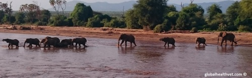 Since we were so close to the Samburu National Park - We had to stop by for a visit